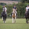 Horse Riding Kilkenny