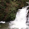 Inistioge WaterfallI